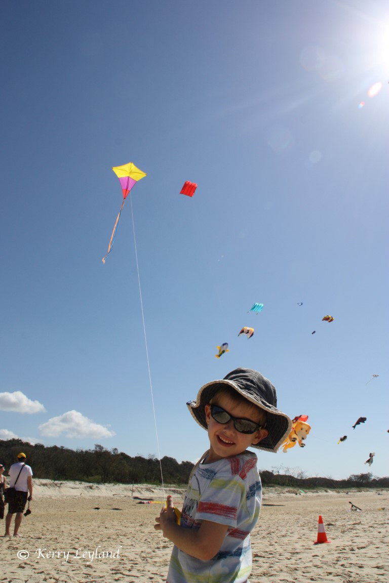 - Kite-Fest-4-Medium
