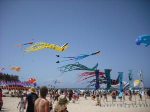 kite (Small)
