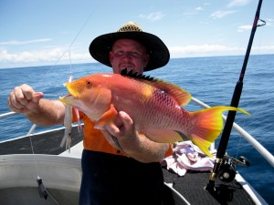 We're catching lots of quality reef fish, like this stunning Gold Spot Wrasse landed by Wayne (Shaddy)