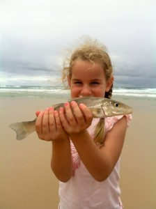 There's been some good whiting caught on the beach - Ella Falconer was very pleased with her after school effort.