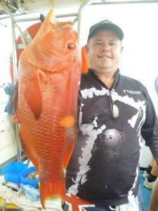 Tony from Calliope with big gold spot wrasse