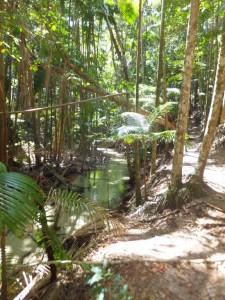 Fraser island 2  nov 14