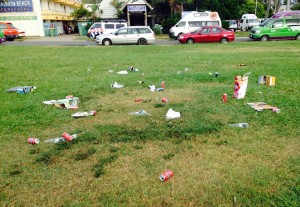CIRS Rubbish in Park