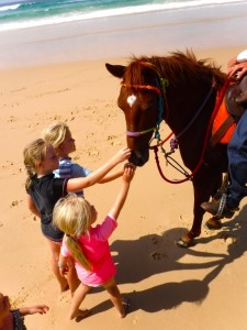 Consider a horse ride on the beach for the holidays