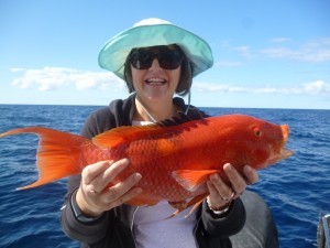 This gold spot wrasse delighted angler Pam from Ireland