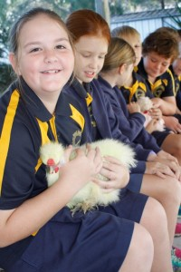Mikala holding a silky bantam when they visited the kitchen garden