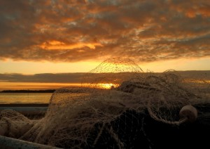 A Grade Highly Commended Fishnet Sunrise was snapped by Cathy Reed