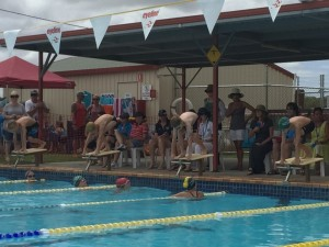 On February 6 the Cooloola Coast Crocs will host a swim meet at Tin Can Bay Pool  Image courtesy of Beck
