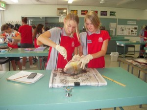 Arwen Goodwin-Van  de Vorst and Kyani Parton learning to learn about Fish Physiology and Anatomy