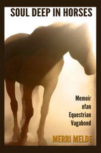 Soul deep in horses memoir of an equestrian vagabond