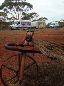 Aussie Bear's last visit to Widgiemooltha in WA