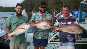 Dan Adamson (centre) and crew from Toowoomba pulled in these snapper at their Christmas party where they held a competition: landscapers versus signwriters