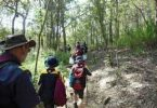 scouts for cooloola coast