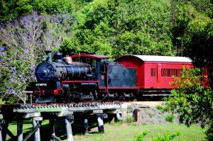 Mary Valley Rattler Train 1