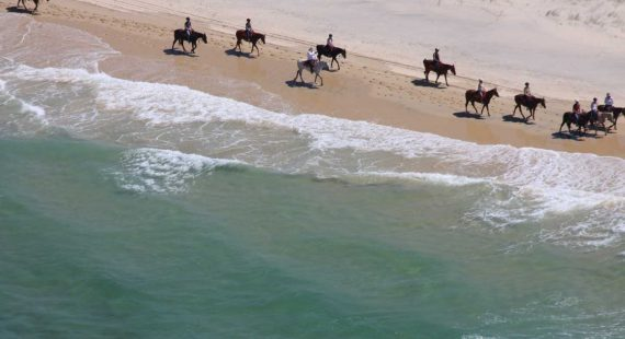 Along with Bondi lifeguards, Kangaroo Island cellar door operator and Falls creek Ski Instructor, Rainbow Beach Horse Rides Instructor has made the list for jobs with the best views Image by M.Gilmore courtesy of Rainbow Beach Helicopters