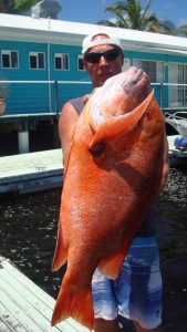 One of the many big red emperor caught on Baitrunner