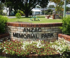 """A descendant of the """"Lone Pine"""" has been planted in Tin Can Bay's Memorial Park"""