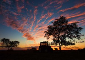 Chris Harvey - Tractor Sunset - A Grade Honour