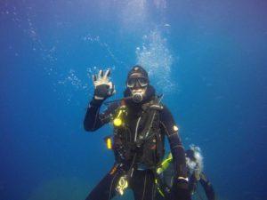 Dive into April