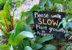 Gour MAY gympie garden expo