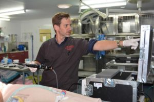 Gympie Veterinarian Shannon Coyne acknowledged as one of Australia's best