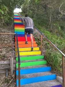 Well done, Team Rainbow. The stairs leading to the patrol tower and beach from  Lawrie Hanson Park were painted in the colours of a rainbow, last month. When this photo was taken, delighted German tourists were photographing the steps.