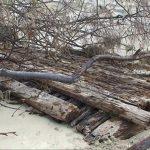 Wreckage just north of Rainbow Beach