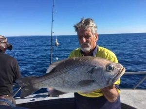 Tin Can Bay Fishing Club member Malcolm Kay with a really nice Pearl perch landed on the day
