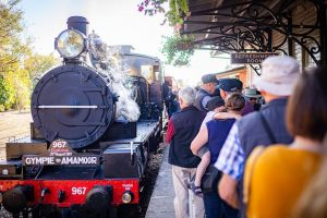 Take a trip on the Rattler this school holidays