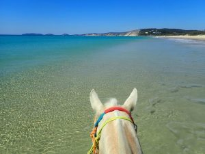Take a horse ride on the beach or in the bush while on holidays - bucket list, tick!