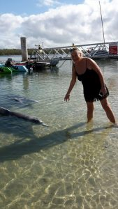 Bev from the Gold Coast visiting the Tin Can Bay dolphins