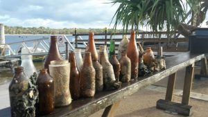 Dolphin Report - Mystique has been busy cleaning up the creek at Tin Can Bay - some of his haul
