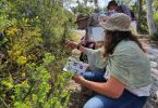 Artist, Sandra Ross (left), in the field, with wildflowering workshop participants. Image by Melissa Stannard