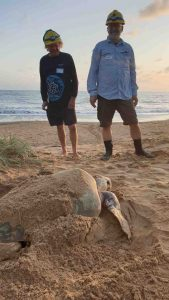 Cooloola Coastcare's TurtleCare group is very keen for public help - here are Murray Sambell and Randy Orwin at turtle training
