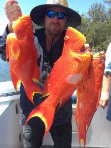 Bribie island regular Bau added these trout to his mixed bag which also included a nice Red Emperor