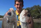 Plenty of quality Pearl Perch have been common lately on Baitrunner: Jackson with a nice pair