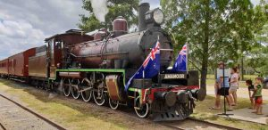 Mary Valley Rattler - Australia Day 2019