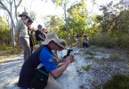 BioBlitz participants photographing the famous flying duck orchids at Rainbow Beach Image Sheena Gillman