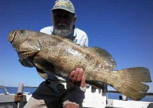 Club member Ron Cox showing off a 90cm cod catch