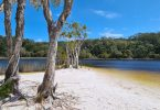Beautiful Poona Lake is where one of the campsites for the proposed Cooloola Great Walk will be situated