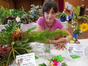 Get your entries ready for the Flower Show - all junior sections are free to enter